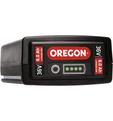 Batteria Oregon Power Now B650E