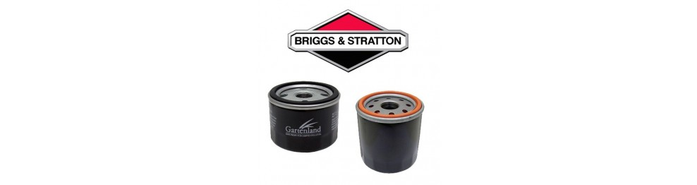 Filtri Briggs & Stratton